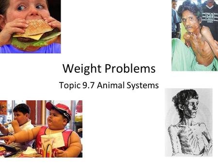 Weight Problems Topic 9.7 Animal Systems. We have looked at how different people have different energy requirements. But what happens if a person takes.