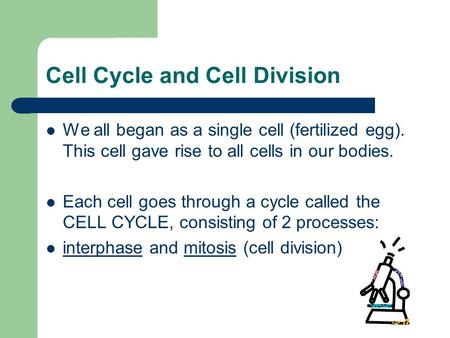 Cell Cycle and Cell Division We all began as a single cell (fertilized egg). This cell gave rise to all cells in our bodies. Each cell goes through a cycle.