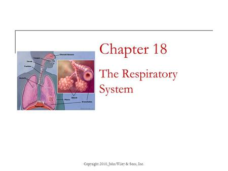 Copyright 2010, John Wiley & Sons, Inc. Chapter 18 The Respiratory System.