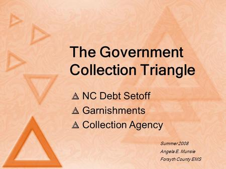 The Government Collection Triangle NC Debt Setoff Garnishments Collection Agency Summer 2008 Angela E. Munsie Forsyth County EMS.