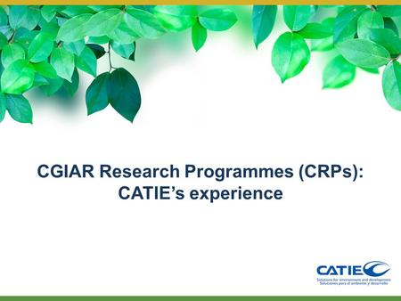 CGIAR Research Programmes (CRPs): CATIE's experience.