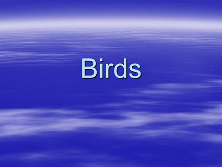 Birds. General Characteristics  Vertebrate  Body covered in feathers  Endothermic- meaning Warm-blooded  Can regulate by increasing breathing rate.