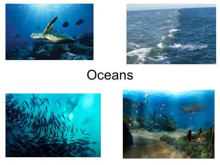 Oceans. Marine Environments Environment: The air, water, minerals, organisms, and all other external factors surrounding and affecting a given organism.