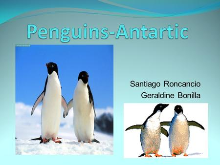 Santiago Roncancio Geraldine Bonilla. Is located in the south pole. has 14 million km 2 of surface area. Temperatures reach a minimum of between −80.