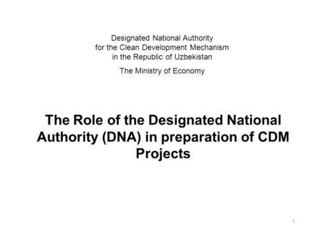 The Role of the Designated National Authority (DNA) in preparation of CDM Projects 1 Designated National Authority for the Clean Development Mechanism.