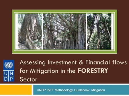 Assessing Investment & Financial flows for Mitigation in the FORESTRY Sector UNDP I&FF Methodology Guidebook: Mitigation.