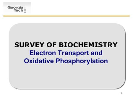 1 SURVEY OF BIOCHEMISTRY Electron Transport and Oxidative Phosphorylation.