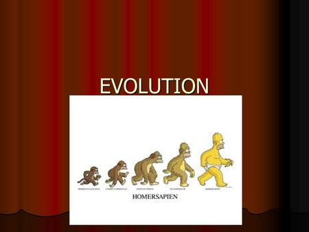 EVOLUTION. EVOLUTION The process of change through time. The process of change through time. Evidences of Evolution Evidences of Evolution Fossils-the.