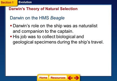 Darwin on the HMS Beagle
