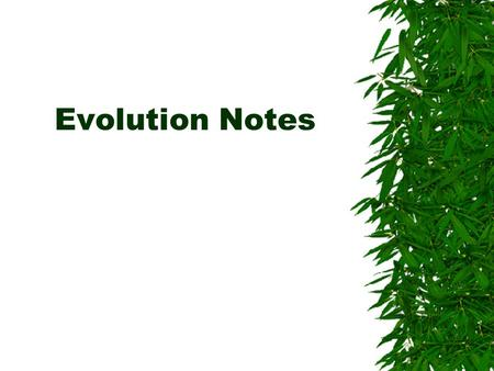 Evolution Notes. Indirect Evidence  Data gathered by looking at the effects of an event rather than witnessing the actual event.