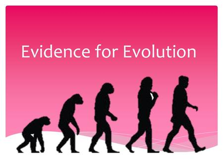 Evidence for Evolution.  Supported by evidence gathered over a century  Evidence must be gathered to support the theory of evolution- THE THEORY CANNOT.