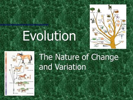 Evolution The Nature of Change and Variation What is Evolution? Simply… a change in living organisms over time Simply… a change in living organisms over.
