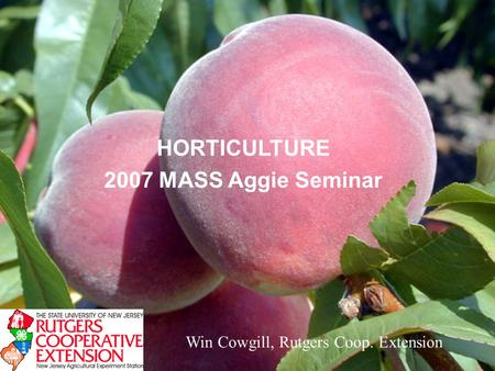 HORTICULTURE 2007 MASS Aggie Seminar Win Cowgill, Rutgers Coop. Extension.