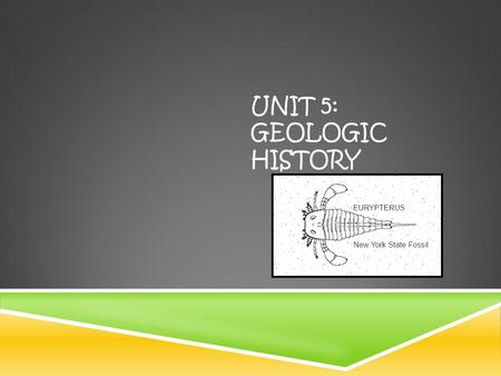 UNIT 5: GEOLOGIC HISTORY. AT THE END OF THIS UNIT YOU WILL BE ABLE TO  Calculate the absolute age of a substance based on its decay rate  Correlate.