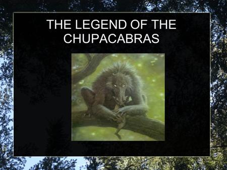 THE LEGEND OF THE CHUPACABRAS. WHAT IS THE CHUPACABRAS? The Chupacabras, in South American legends, is a horrible monster that kills the cattle. The legend.