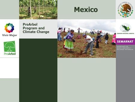 ProArbol Program and Climate Change Mexico. CONTENT Presentation Categories and Impact areas Stages of ProArbol Budget 2007 Main Goals 2007 ProArbol and.