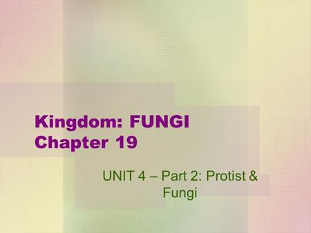 Kingdom: FUNGI Chapter 19 UNIT 4 – Part 2: Protist & Fungi.