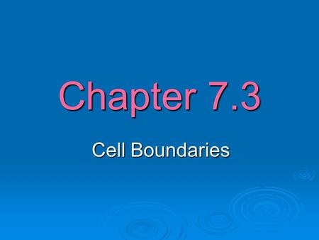 Chapter 7.3 Cell Boundaries. Passive Transport  The movement of a substance across a cell membrane without the use of energy is called passive transport.
