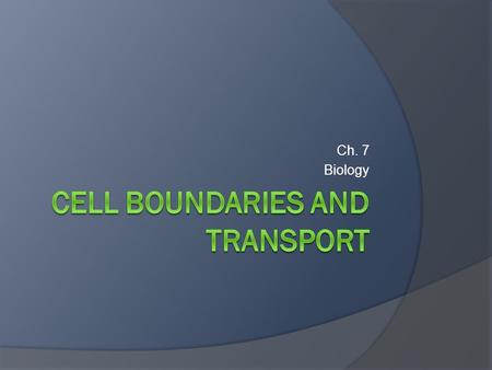 Cell Boundaries and transport