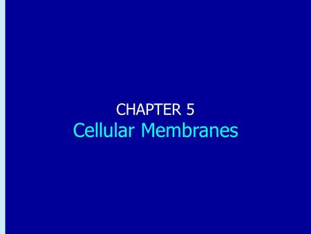 Chapter 5: Cellular Membranes CHAPTER 5 Cellular Membranes.