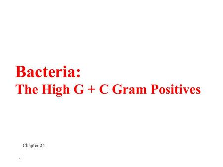 1 Bacteria: The High G + C Gram Positives Chapter 24.