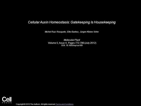 Cellular Auxin Homeostasis: Gatekeeping Is Housekeeping