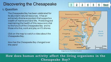 The Chesapeake Bay has been celebrated for its abundant natural resources. It has an extremely diverse ecosystem that supports a wealth of marine and land.