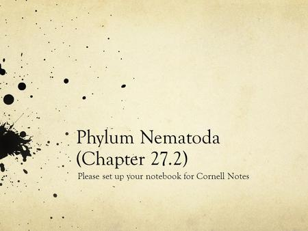 Phylum Nematoda (Chapter 27.2) Please set up your notebook for Cornell Notes.