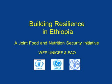 Building Resilience in Ethiopia A Joint Food and Nutrition Security Initiative WFP,UNICEF & FAO.