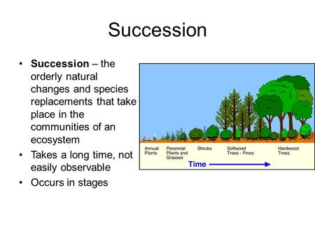 Succession Succession – the orderly natural changes and species replacements that take place in the communities of an ecosystem Takes a long time, not.