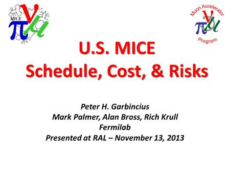 U.S. MICE Schedule, Cost, & Risks Peter H. Garbincius Mark Palmer, Alan Bross, Rich Krull Fermilab Presented at RAL – November 13, 2013.