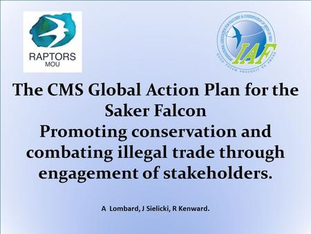 The CMS Global Action Plan for the Saker Falcon Promoting conservation and combating illegal trade through engagement of stakeholders. A Lombard, J Sielicki,