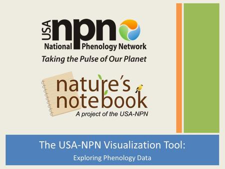The USA-NPN Visualization Tool: Exploring Phenology Data.