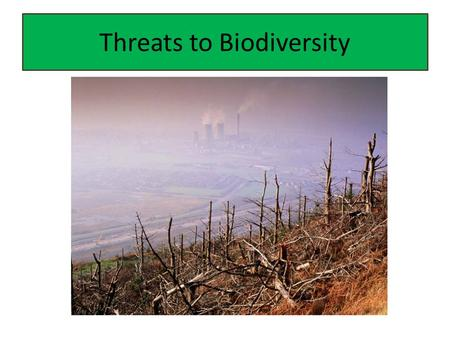 Threats to Biodiversity. Biodiversity What is biodiversity? – The total diversity of life Why is it important? – One of Earth's greatest natural resources.