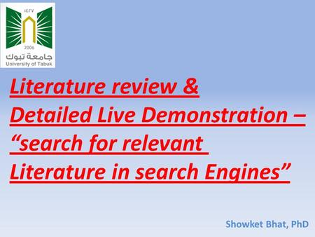 literature review on increasing website traffic