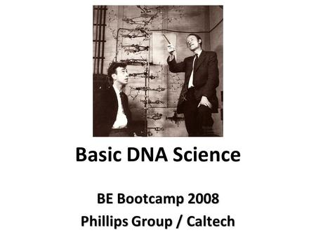 Basic DNA Science BE Bootcamp 2008 Phillips Group / Caltech.