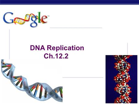 AP Biology 2007-2008 DNA Replication Ch.12.2 AP Biology DNA Replication  Purpose: cells need to make a copy of DNA before dividing so each daughter.
