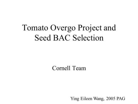 Tomato Overgo Project and Seed BAC Selection Cornell Team Ying Eileen Wang, 2005 PAG.
