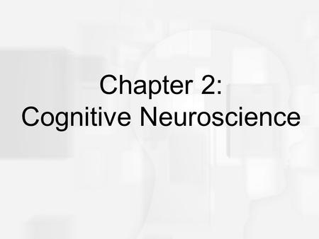 Cognitive Psychology, Sixth Edition, Robert J. Sternberg Chapter 2 Chapter 2: Cognitive Neuroscience.