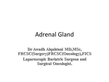 Adrenal Gland Dr Awadh Alqahtani MD,MSc, FRCSC(Surgery)FRCSC(Oncology),FICS Laparoscopic Bariatric Surgeon and Surgical Oncologist.