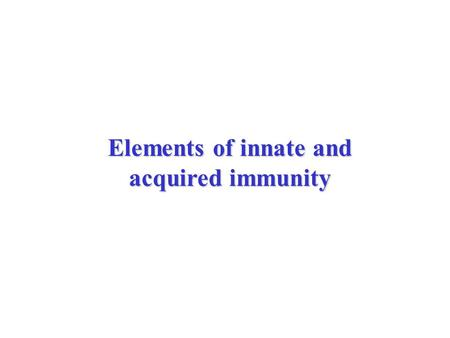 Elements of innate and acquired immunity. E. coli bacteria adhering to the surface of epithelial cells of the urinary tract.