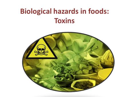 Biological hazards in foods: Toxins. MYCOTOXINS Mycotoxins - toxic substances produced by a large number of molds (fungi), and are highly toxic to animals.
