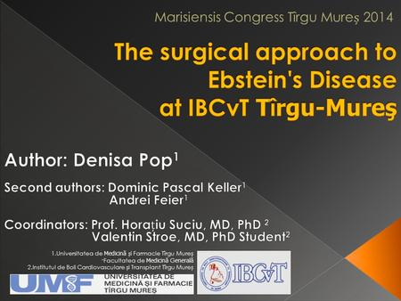 The surgical approach to Ebstein's Disease at IBCvT Tîrgu-Mureş