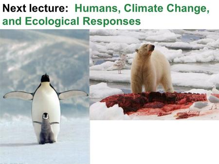 Next lecture: Humans, Climate Change, and Ecological Responses.