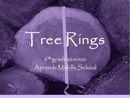 Tree Rings 6 th grade science Aprende Middle School.