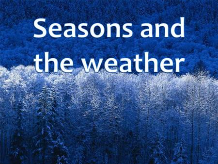 There are four seasons in the year. They are: winter.