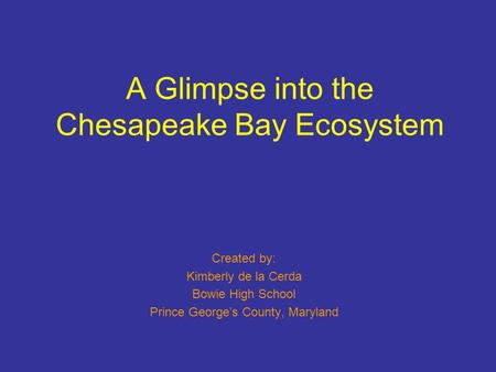A Glimpse into the Chesapeake Bay Ecosystem