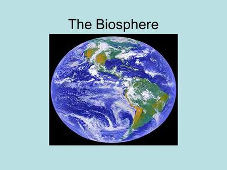 The Biosphere Vocabulary Ecology Biosphere Species Population Community Ecosystem Biome Producer Consumer Autotroph Heterotroph Decomposer Food Chain.