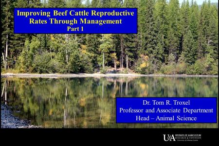 Improving Beef Cattle Reproductive Rates Through Management Part 1 Dr. Tom R. Troxel Professor and Associate Department Head – Animal Science.