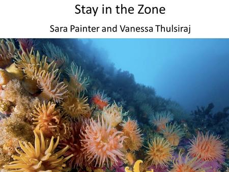 Stay in the Zone Sara Painter and Vanessa Thulsiraj.